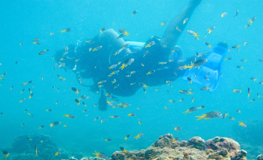 Diver Karon Beach