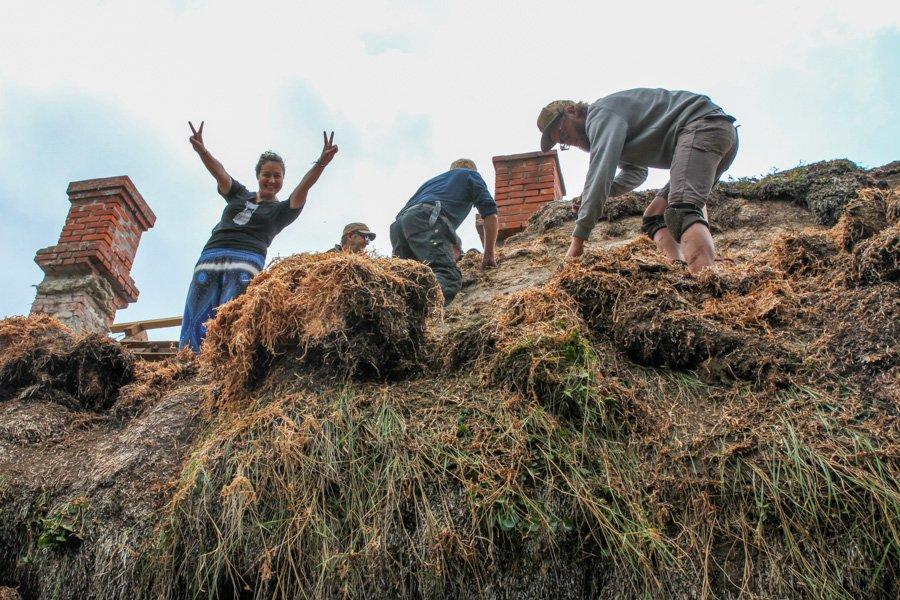 Laeso Seaweed roof